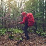 Nine Awesome Tips For Hiking In the Rain: Have Fun Anytime!